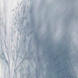 6 ombra sulla neve 800x477