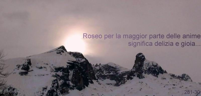 5  roseo 800x384